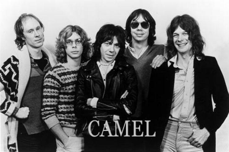 Top Camel